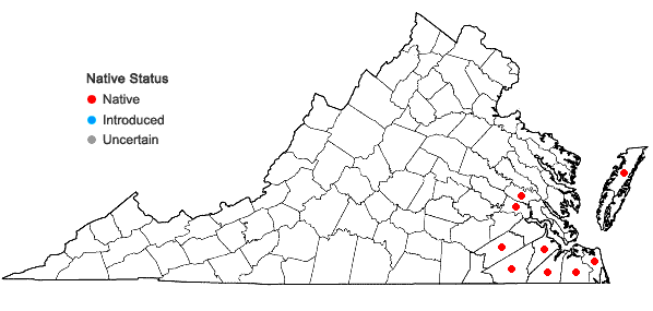 Locations ofStewartia malacodendron L. in Virginia