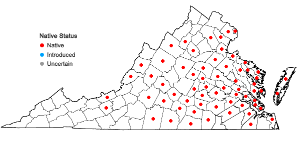 Locations ofStrophostyles helvola (L.) Ell. in Virginia