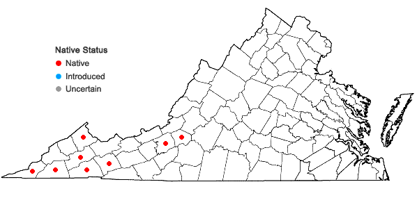Locations ofStylophorum diphyllum (Michaux)  Nuttall in Virginia