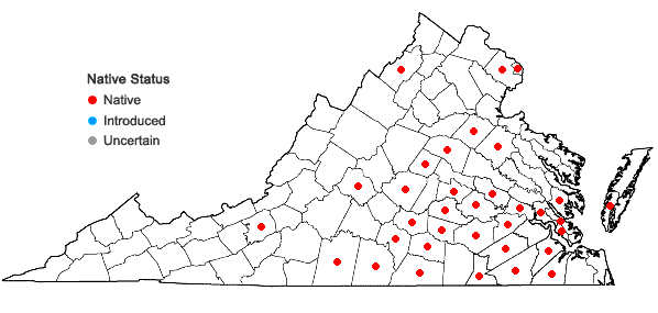 Locations ofSymphyotrichum concolor (L.) Nesom in Virginia