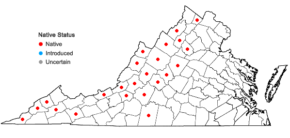 Locations ofSymphyotrichum lowrieanum (Porter) Nesom in Virginia