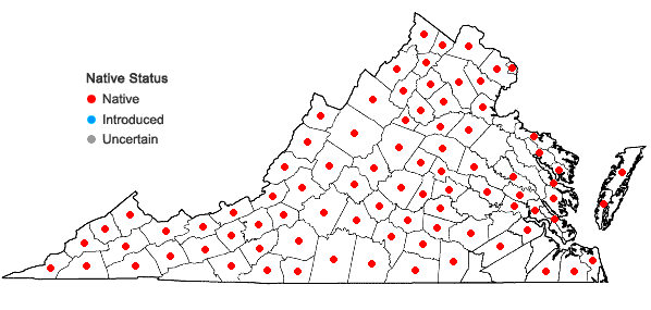 Locations ofSymphyotrichum undulatum (L.) Nesom in Virginia
