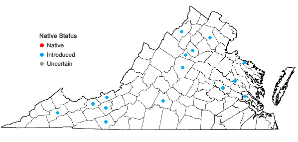 Locations ofTanacetum vulgare L. in Virginia