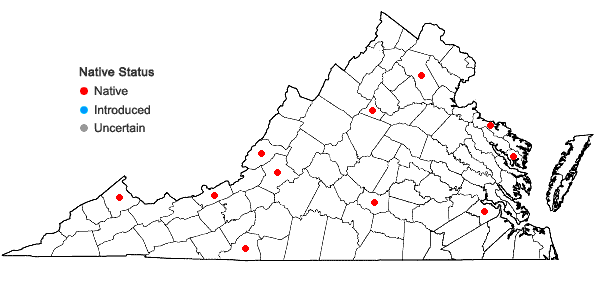 Locations ofTaxiphyllum taxirameum (Mitt.) M. Fleisch. in Virginia