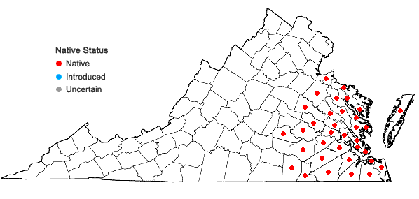 Locations ofTaxodium distichum (L.) Richard var. distichum in Virginia
