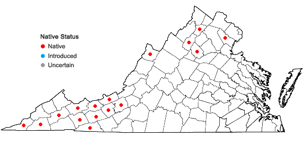 Locations ofTaxus canadensis Marshall in Virginia