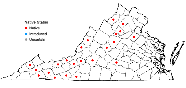 Locations ofThamnobryum alleghaniense (Müll. Hal.) Nieuwl. in Virginia
