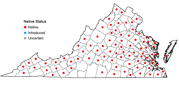 Locations ofThuidium delicatulum (Hedw.) Schimp. in Virginia