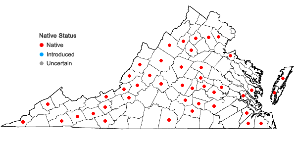Locations ofTortella humilis (Hedw.) Jenn. in Virginia