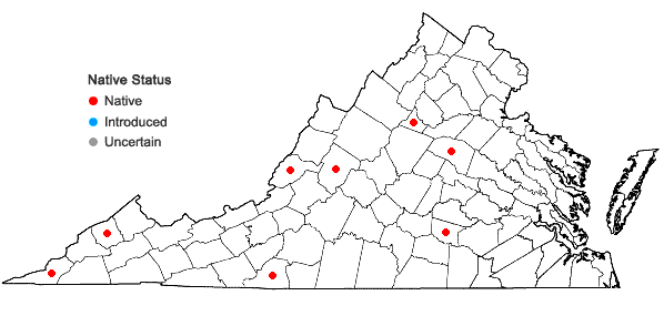 Locations ofTortella tortuosa (Hedw.) Limpr. var. tortuosa in Virginia