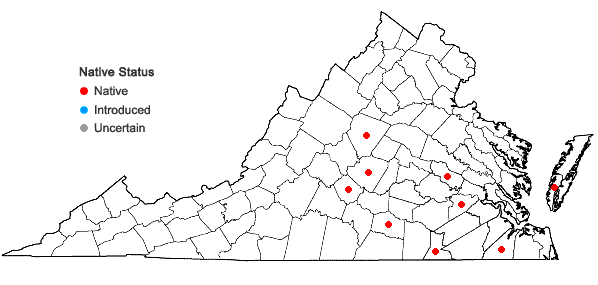 Locations ofTrematodon longicollis Michaux in Virginia