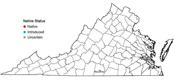 Locations ofTridens strictus (Nutt.) Nash in Virginia