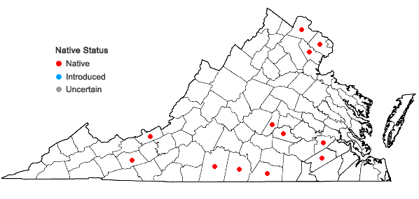 Locations ofTrifolium reflexum L. in Virginia