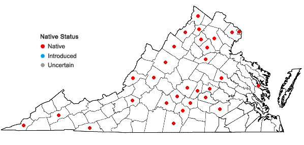 Locations ofTriosteum angustifolium L. in Virginia