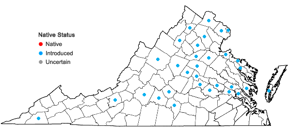 Locations ofTriticum aestivum L. in Virginia