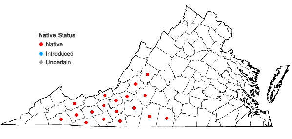 Locations ofTsuga caroliniana Engelm. in Virginia