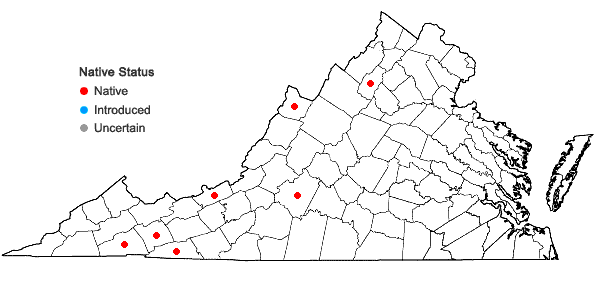 Locations ofUlota coarctata (P. Beauv.) Hammar in Virginia