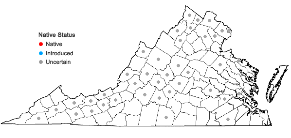 Locations ofUrtica dioica L. + Urtica gracilis Ait. in Virginia
