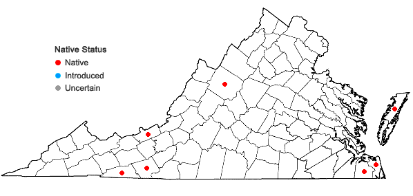 Locations ofVaccinium macrocarpon Ait. in Virginia