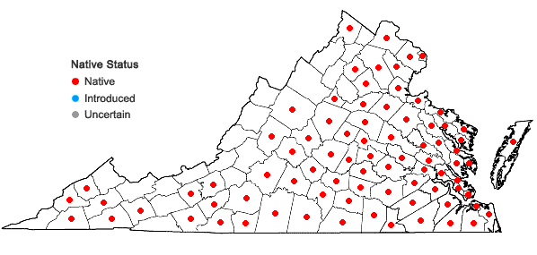 Locations ofValerianella radiata (L.) Dufr. in Virginia