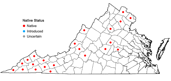 Locations ofVernonia gigantea (Walt.) Trel. in Virginia