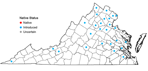 Locations ofVeronica agrestis L. in Virginia