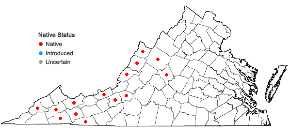 Locations ofViburnum lantanoides Michx. in Virginia
