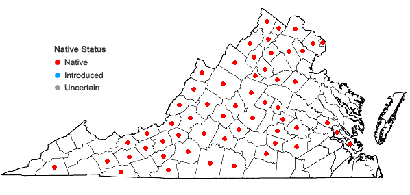 Locations ofViola fimbriatula J.E. Smith in Virginia