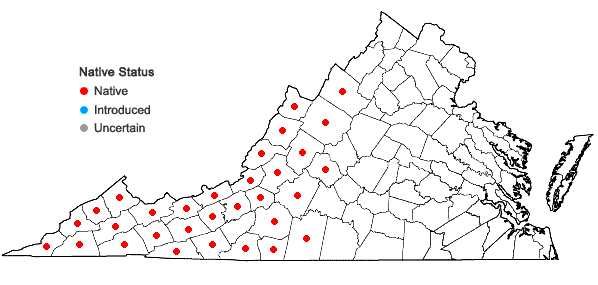 Locations ofViola hastata Michx. in Virginia