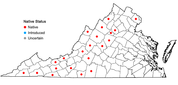 Locations ofViola macloskeyi Lloyd var. pallens (Banks ex DC) C.L. Hitchc. in Virginia