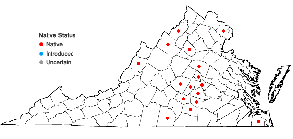 Locations ofViola palmata L. var. dilatata Elliott in Virginia