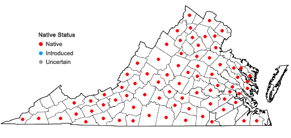 Locations ofViola pedata L. in Virginia