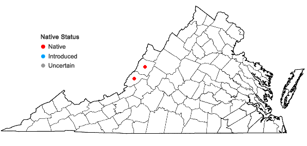Locations ofViola pedatifida G. Don in Virginia