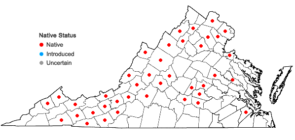 Locations ofViola pubescens Aiton var. pubescens in Virginia