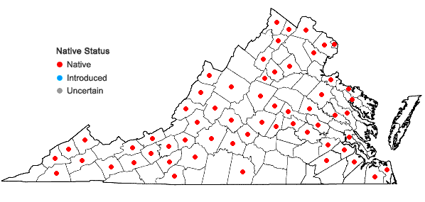 Locations ofVitis riparia Michx. in Virginia