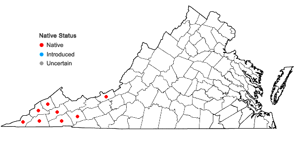 Locations ofVittaria appalachiana Farrar & Mickel in Virginia
