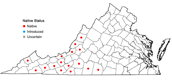 Locations ofWoodsia appalachiana T.M.C. Taylor in Virginia