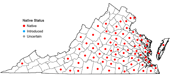 Locations ofWoodwardia areolata (L.) T. Moore in Virginia