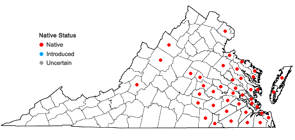 Locations ofWoodwardia virginica (L.) Sm. in Virginia