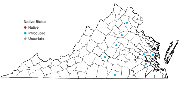 Locations ofZea mays L. ssp. mays in Virginia