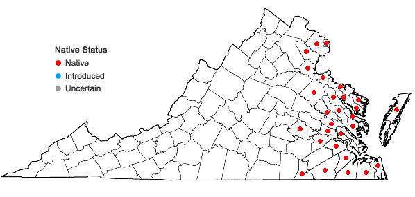 Locations ofZizania aquatica L. var. aquatica in Virginia
